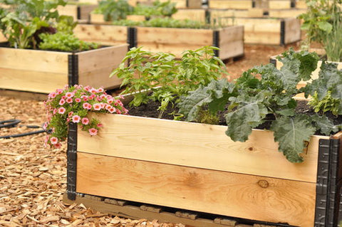 Pallet Style Patio Container / Garden Bed Kit!