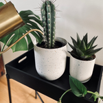 Aubury & Co White Indoor Planter Pots | Modern Flower Pots