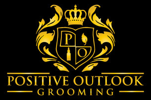 Positive-Outlook-Grooming