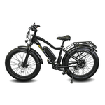 Ewheels EW-Supreme 750W Electric Cruiser Bike Black