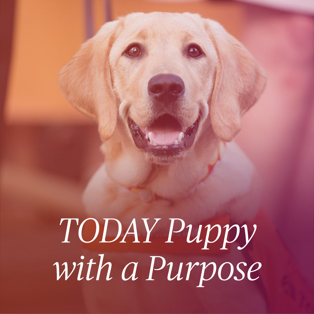Today Puppy with a Purpose