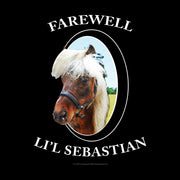 Parks and Recreation Farewell Li'l Sebastian Women's V-Neck T-Shirt