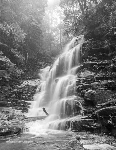 Sylvia Falls in B+W; as the mist & drizzle descend once more (Portrait)