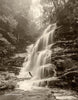Sylvia Falls in Sepia; as the mist & drizzle descend once more (Portrait)
