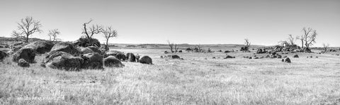 The Cooma Rockfields - Space .. (B+W)
