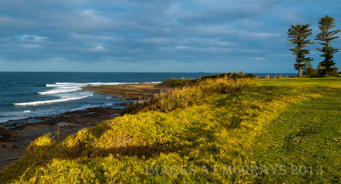 Late Evening Light at Sandon Point