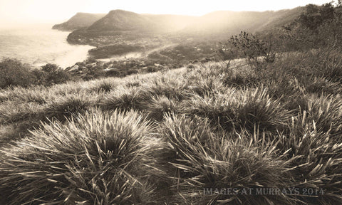 Bald Hill to Stanwell - Evening Scenic 2 - Sepia