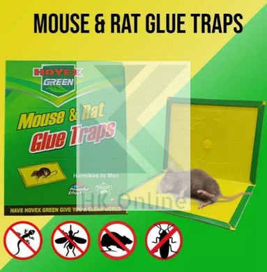 Easy Mouse & Rat GLUE TRAPS -Sticky Mice Rodent Glue Board Bait Traps