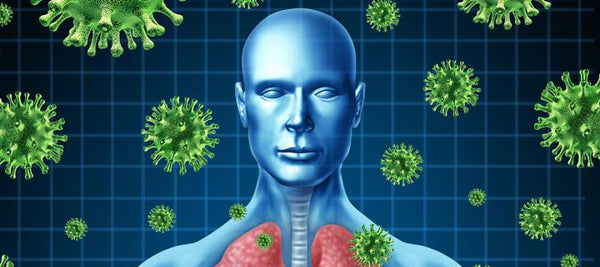 Viruses attacking the human body