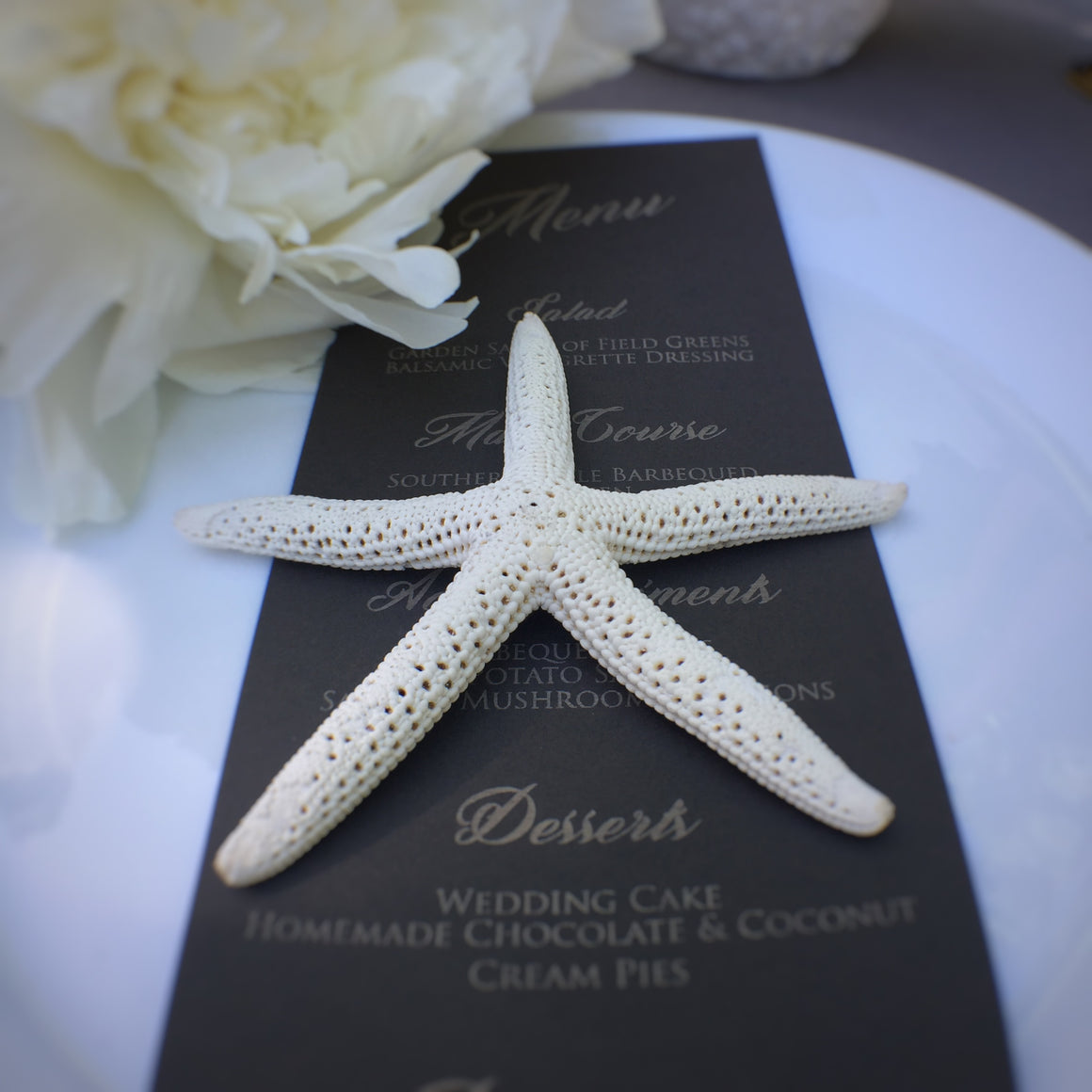 "4"" Diameter Natural Bleached Starfish - 10 Pieces"