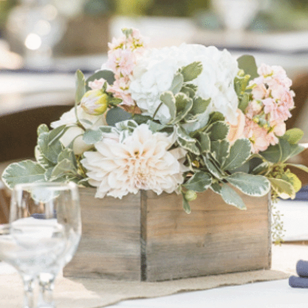 DIY Centerpiece - Peach and Navy with Pittosporum, White Stock, Ivory and Peach Garden Roses, White Hydrangea and Creme Brulee Dahlia