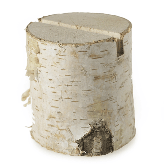 Birch Stump Name Card Holders - Bag of 6