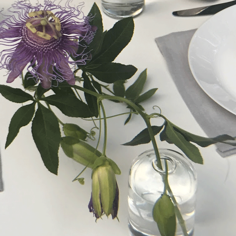 high ball bud vase with passiflora vines