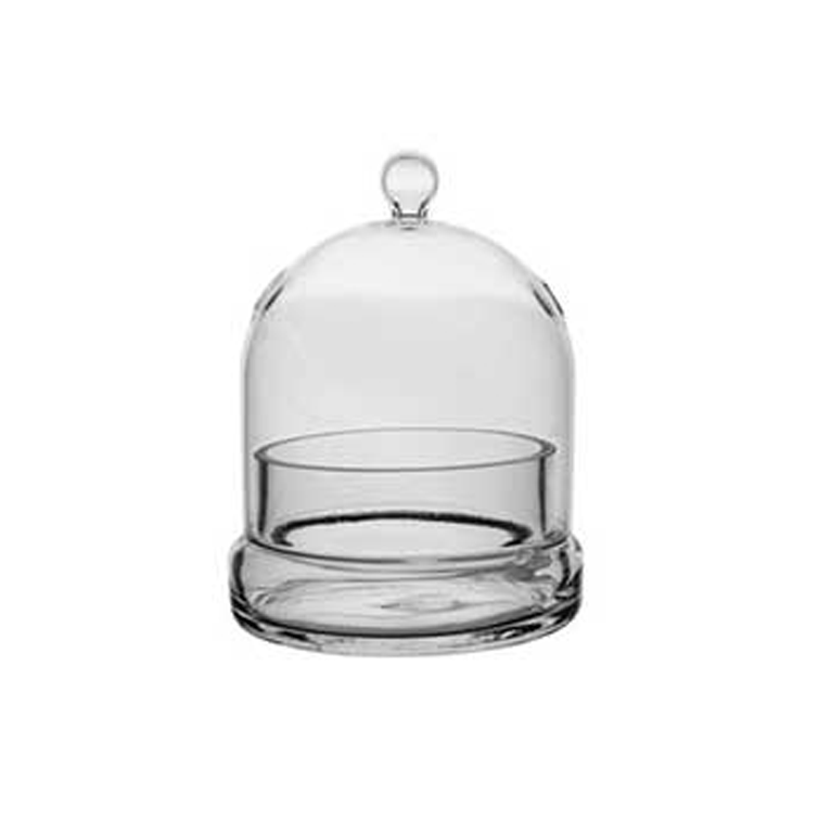 "6"" Tall Terrarium Cloche with Base"