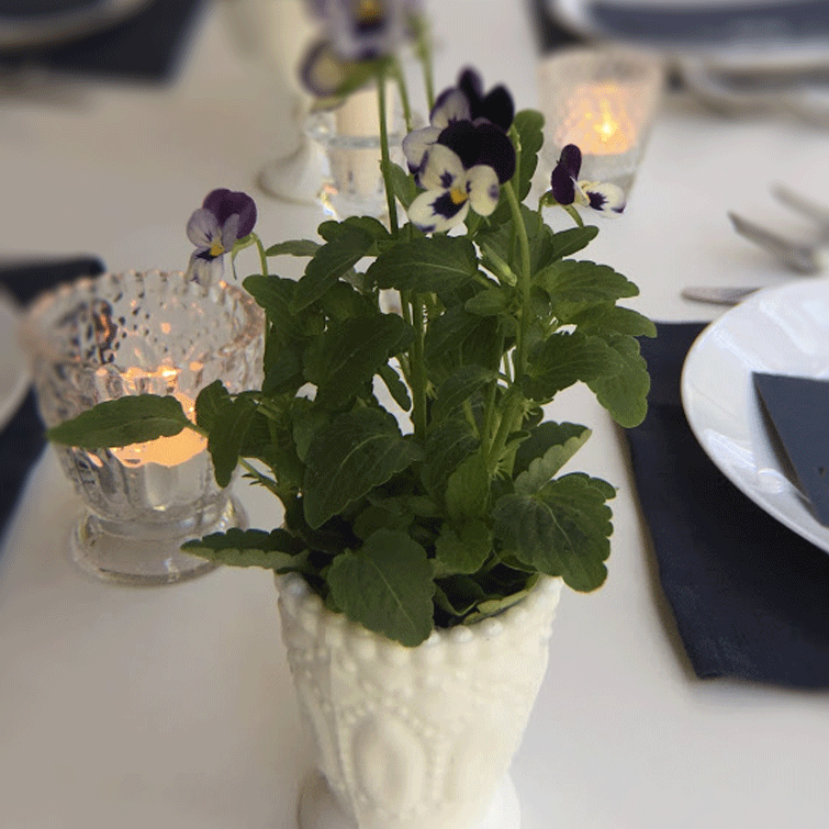 DIY Centerpieces - Heirloom Compote Votive White with blue Viola Pansies