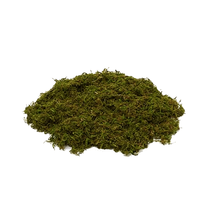 Shagnum Moss - 2 Pounds