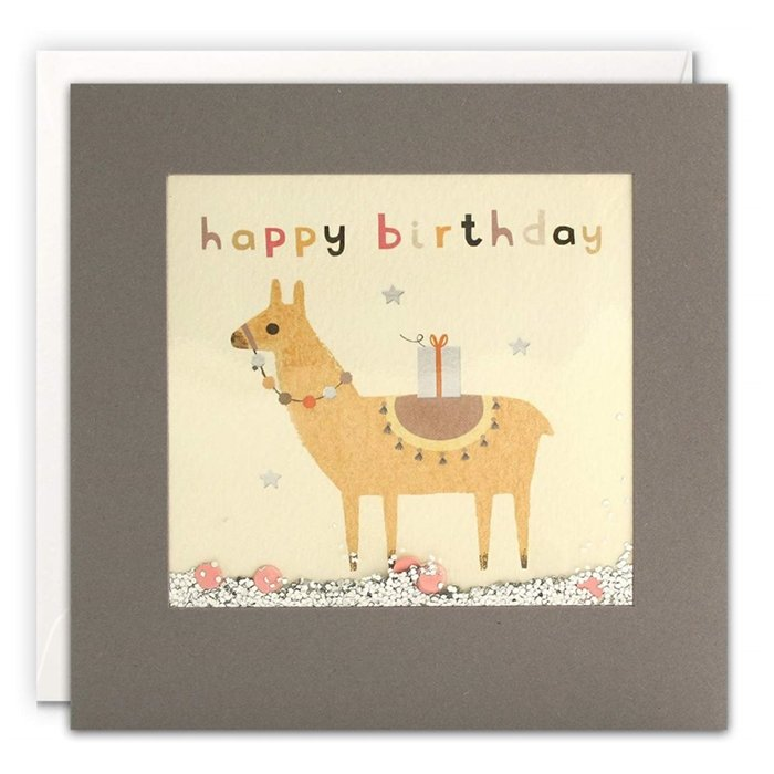 Card - Llama Parcel Birthday Shakie