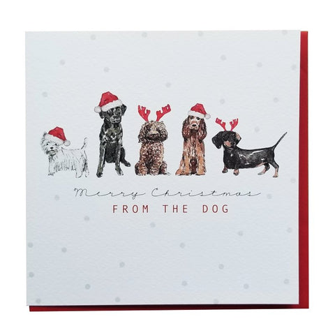 Card - Merry Christmas from the Dog