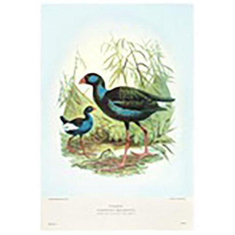 Pukeko Prestige Tea Towel