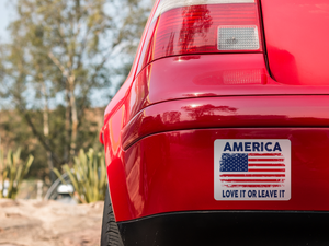 America (Love It): Decal / Sticker (White)