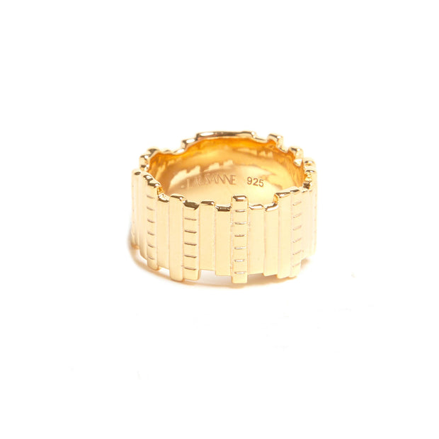 Slice and Dice Ring 1