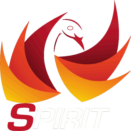 Spirit Martial Arts | Supplies & Apparel
