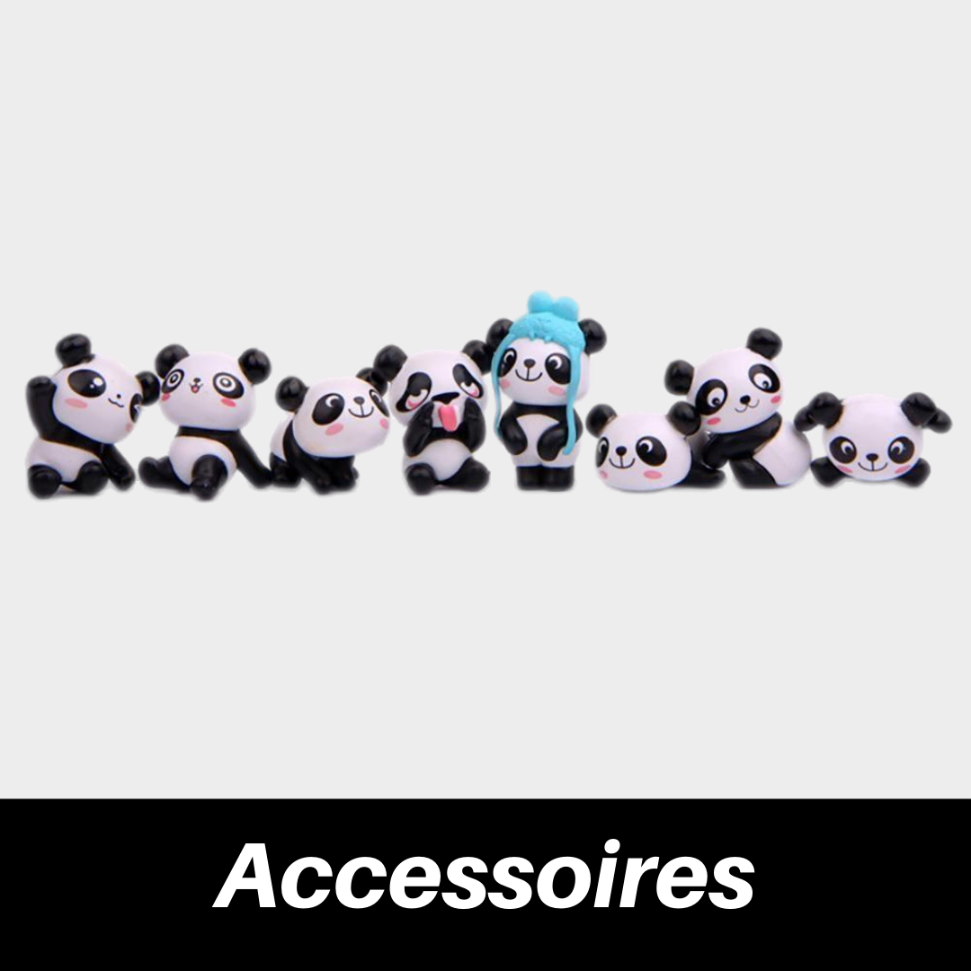 collection daccessoires