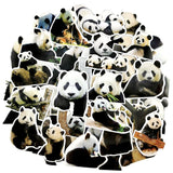 Pack de Stickers Panda