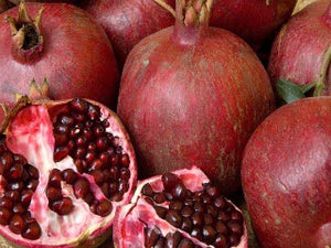 Grenada Pomegranate bush for sale