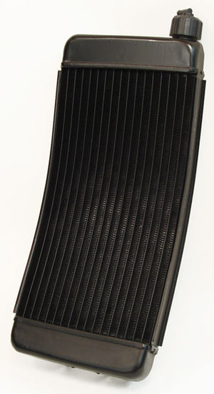 WildKart Curved Radiator