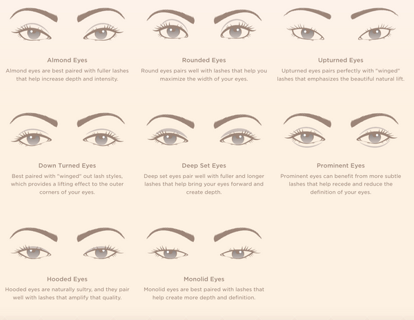 Best Fake Eyelashes for Beginners