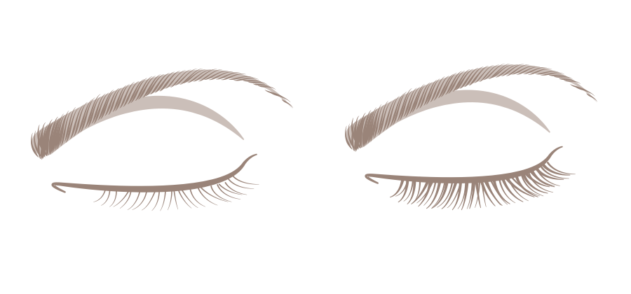 Try our interactive lash guide