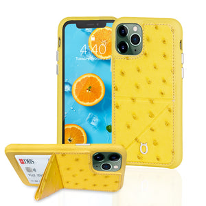 Ostrich Leather Phone Case with stand function_ iPhone 11 Pro