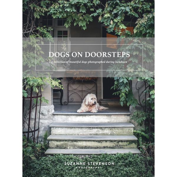 Dogs On Doorsteps