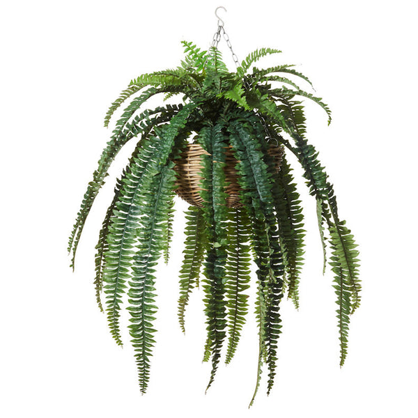 Boston Fern Rattan Hanging Bowl: Large