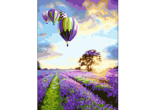 Hot Air Balloon & Lavender Fields
