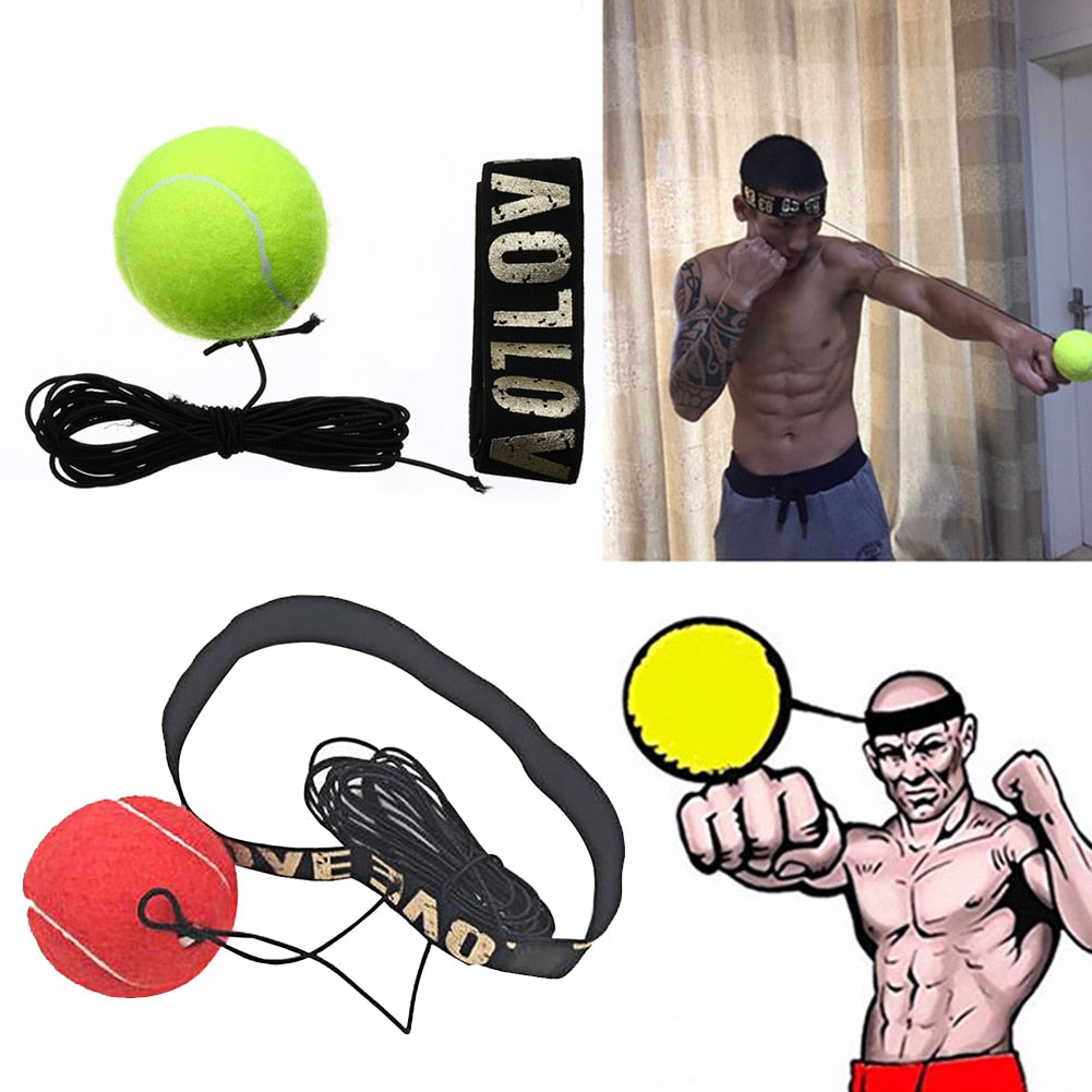 Boxing Punch Ball