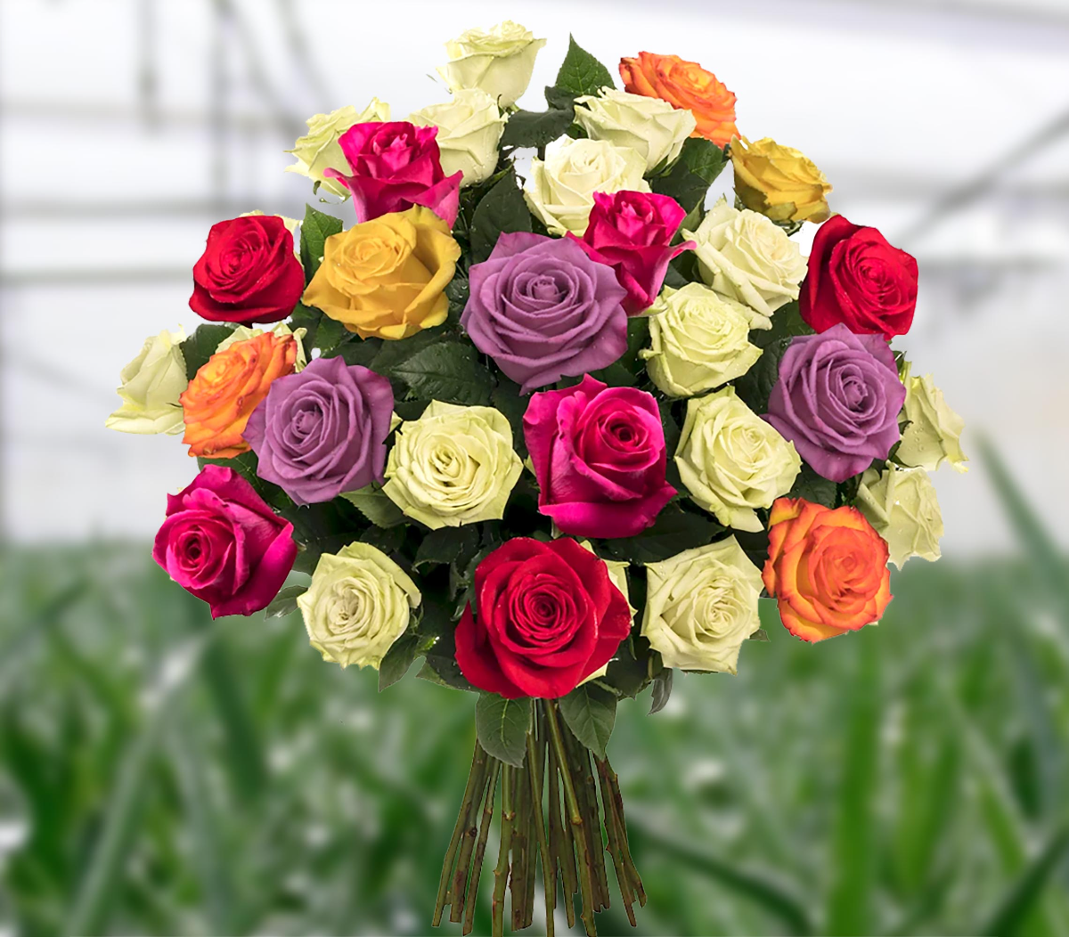 Thanks for Entering Our Raffle to Win a FREE Breathtaking Blend Bouquet!