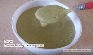 Heavenly Creamy Asparagus Soup