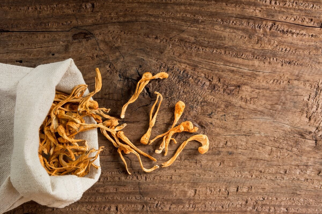 Cordyceps mushrooms in a white linen bag poured over a wooden table