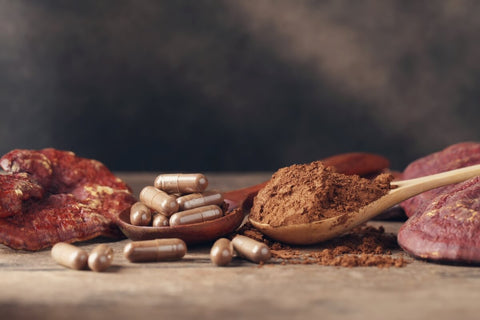 mushroom-supplements-pills-and-powder