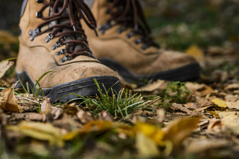 A pair of hiking boots standing on the forest floor