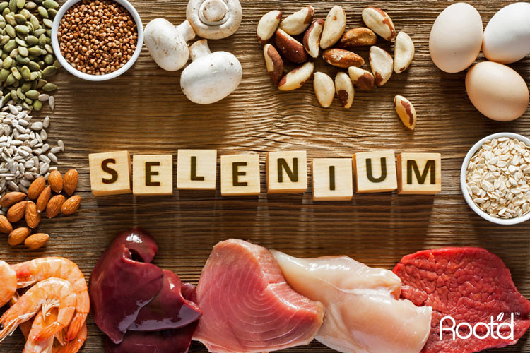 9 Best Food Sources Of Selenium & Why We Need It – Root'd