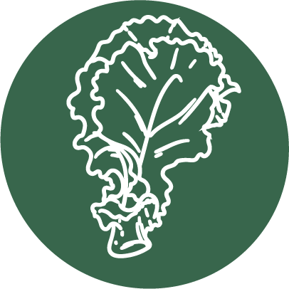 Root'd Best Sources of Folate in Kale Icon