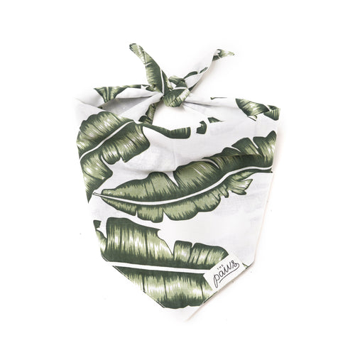 Tropical Jungle Bandana
