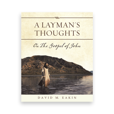 A Layman's Thoughts