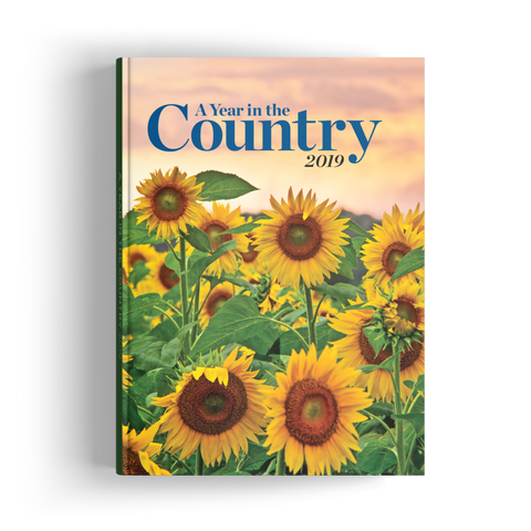 A Year in the Country (2019)