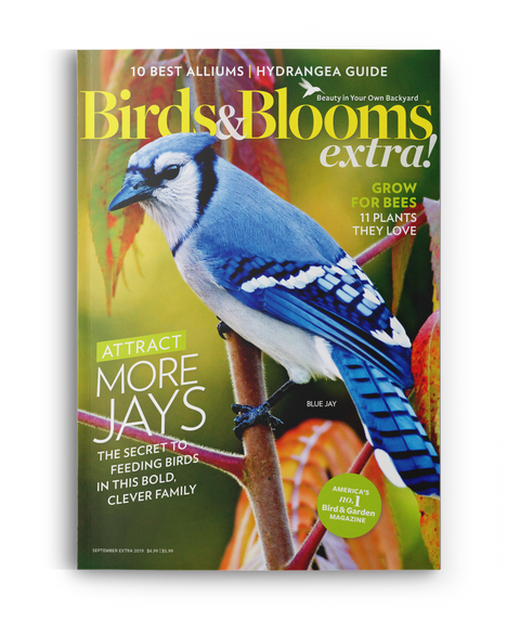Birds & Blooms EXTRA Magazine - Single Issue