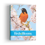 Best of Birds & Blooms (2019)