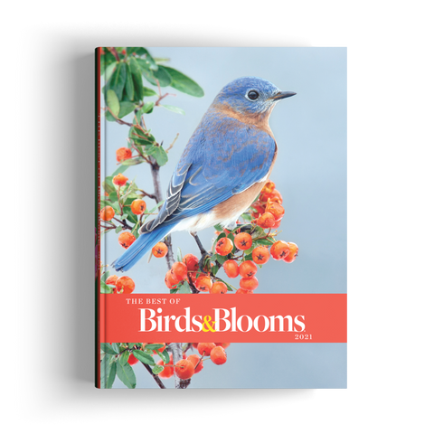 The Best of Birds & Blooms (2021)